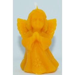 Anjelik malý -  modliaci sa...